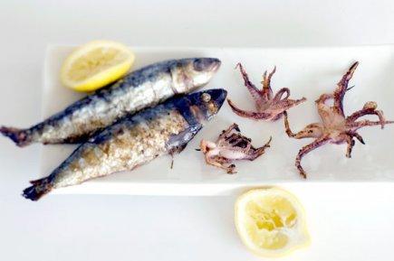 sardine002.jpg